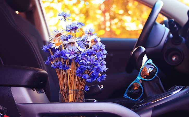 flowers in cupholder